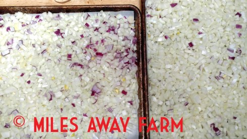 Diced onions on a sheet pan