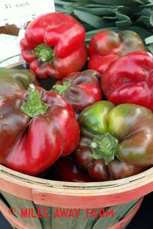 Bullnose bell peppers