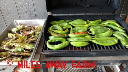 Joe Parker chilies roasting on the grill.