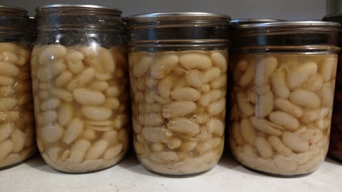 Canned Cannellini Beans