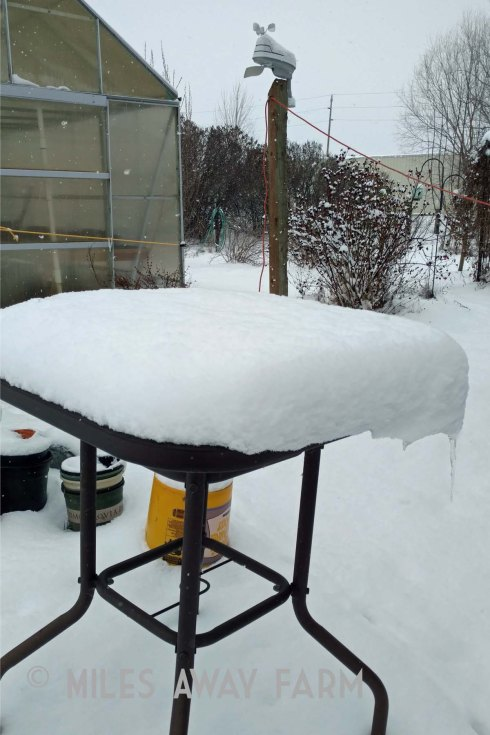 Snow on outdoor table